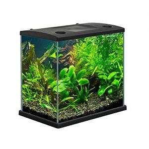 migliore acquario per pesci - opinioni e prezzi